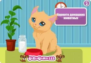 flash-игра Kitty care