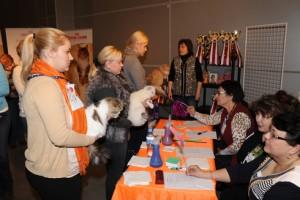 Кошачья выставка, фото2